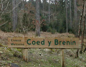 We are based in Coed y Brenin